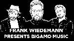 Frank Wiedemann presents Bigamo Musik