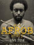 Die Afrob Story - Live 2018