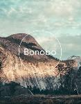 BONOBO + Very Special Guests